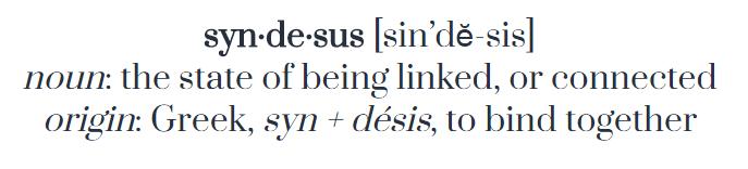 syndesus_define