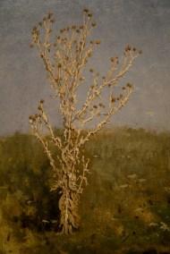 'Musk Thistle (Bodiak)' by Jan Stanisławski