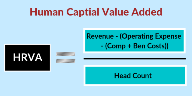 human capital value added