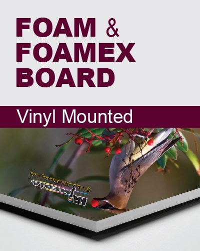 foam or foamex display board