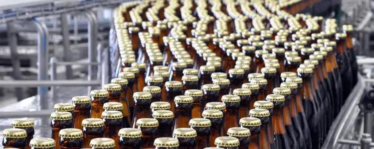 bottles300