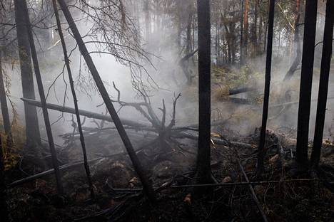 Friday's rains delighted fire extinguishers in the Kalajoki wildfire area.  However, the benefits of the rain were meager, says Jarmo Haapanen, the rescue director of Jokilaakso.