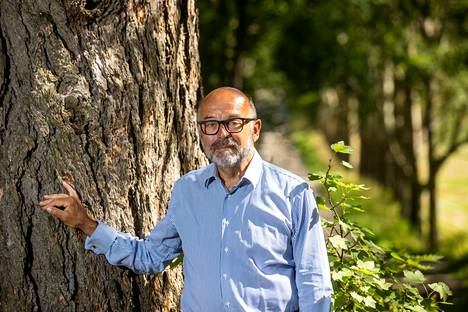 There are many handsome, hundreds of years old trees on the lands of Erkylä Manor.  The forest is important to Ilkka Brotherus.  On the morning of the interview day, he has had time to walk in the woods for an hour.