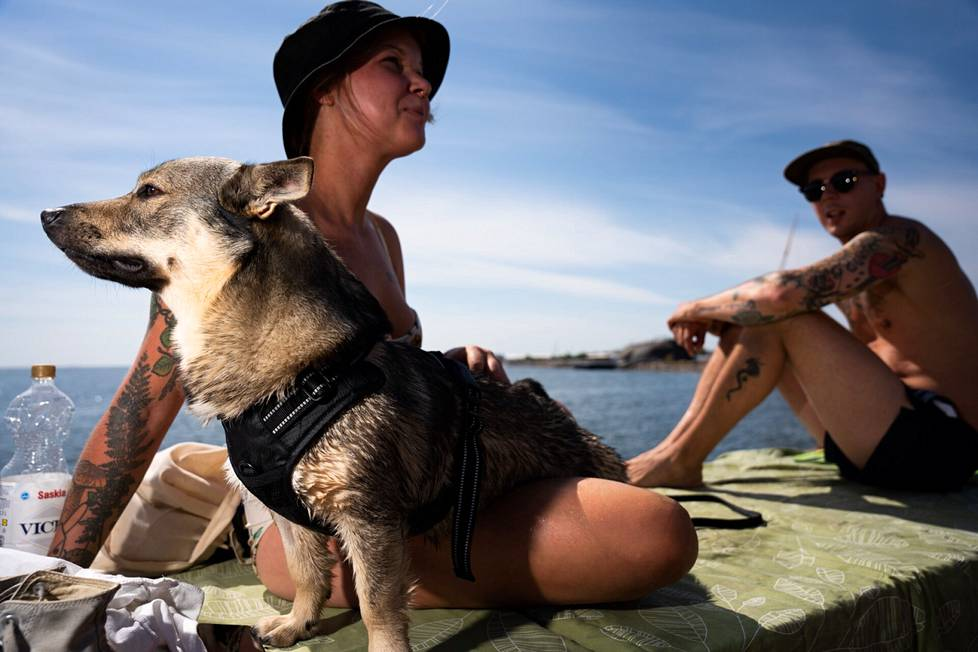 """Hanne Honkanen and Jouko Aarnio enjoy the sun with a Bao dog who moved to the family five days ago.  Two-year-old Baokin went swimming but did not yet enjoy the water for a particularly long time.  According to the owners, the dog also enjoys the heat.  """"It's probably waiting for you to get left,"""" Honkanen laughed."""