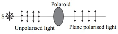 plan polarised light