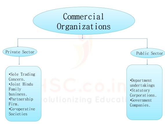 Commercial Organization