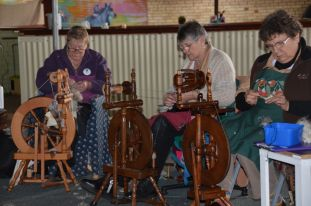 Toodyay spinners competing in the challenge