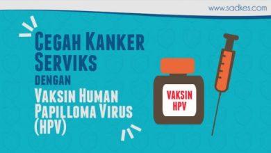 Photo of Kanker Serviks & Vaksin Human Papilloma Virus (HPV) yang Tidak Banyak Orang Ketahui