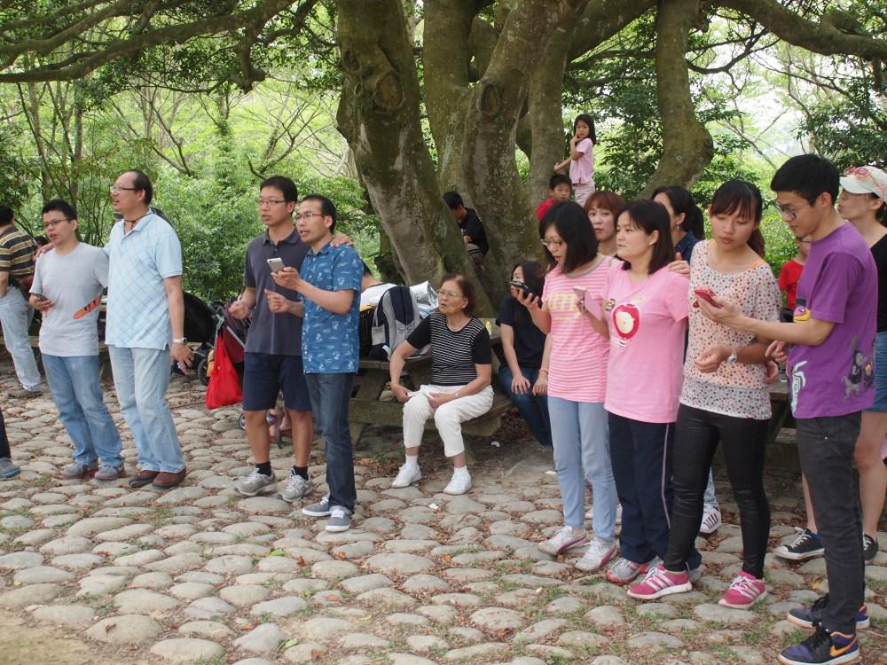樹下唱歌敬拜神,願新竹教會有像這大樹一樣的成長茁壯。