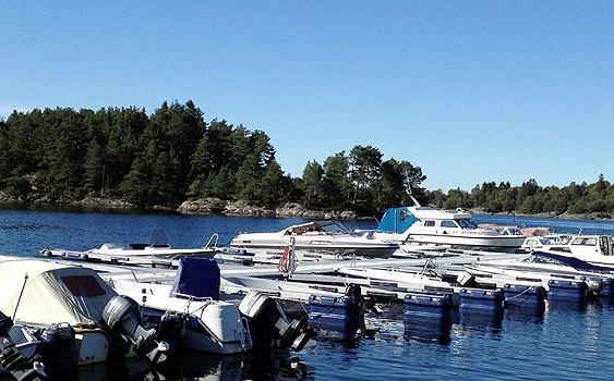Sommeridyll ved sjøen. Fotograf: Jarle Petterson