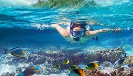 Royal Caribbeans Snapchat-kanal deler spektakulære undervannsopplevelser med sine følgere