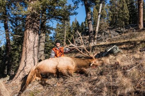 #elkhunting #bullelk #antlers #hsmammo #gun #rifle #huntingshack #westernmontana