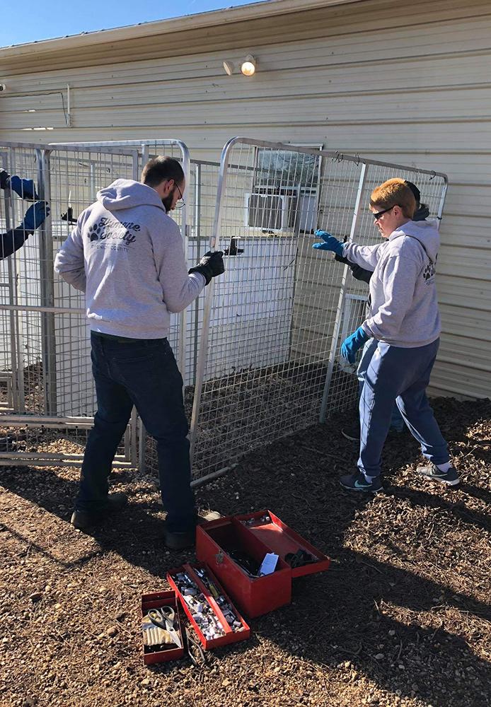 Group of volunteers building an outdoor pet enclosure.