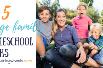 Looking for somelstrategies to help lhomeschool your large family? Hoping to learn from a large-family approach? Here are five of my best tips.