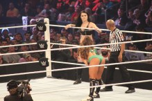 Royal_Rumble_2015 (37)