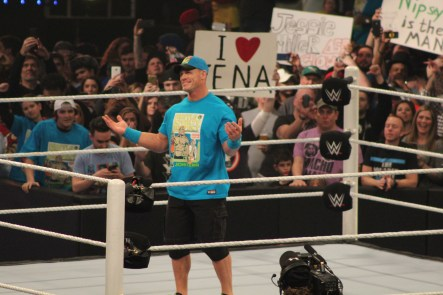 Royal_Rumble_2015 (38)