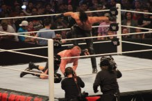 Royal_Rumble_2015 (49)