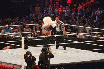 Royal_Rumble_2015 (53)