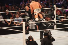 Royal_Rumble_2015 (63)