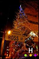 Christmas Tree at City Hall, Red Deer, Alberta, Canada