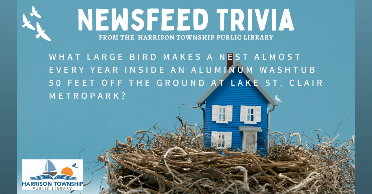 Newsfeed Trivia question: What large bird makes a nest almost every year inside an aluminum washtub 50 feet off the ground at Lake St. Clair Metropark?