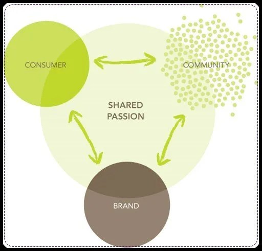 Brand Marketing & Management…