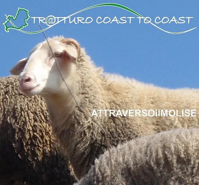 Tr@tturo Coast 2 Coast attraverso il Molise, viaggio a piedi sulle orme dei Sanniti