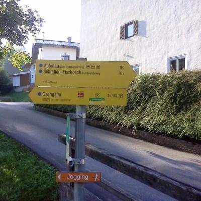 Abtenau-walking1