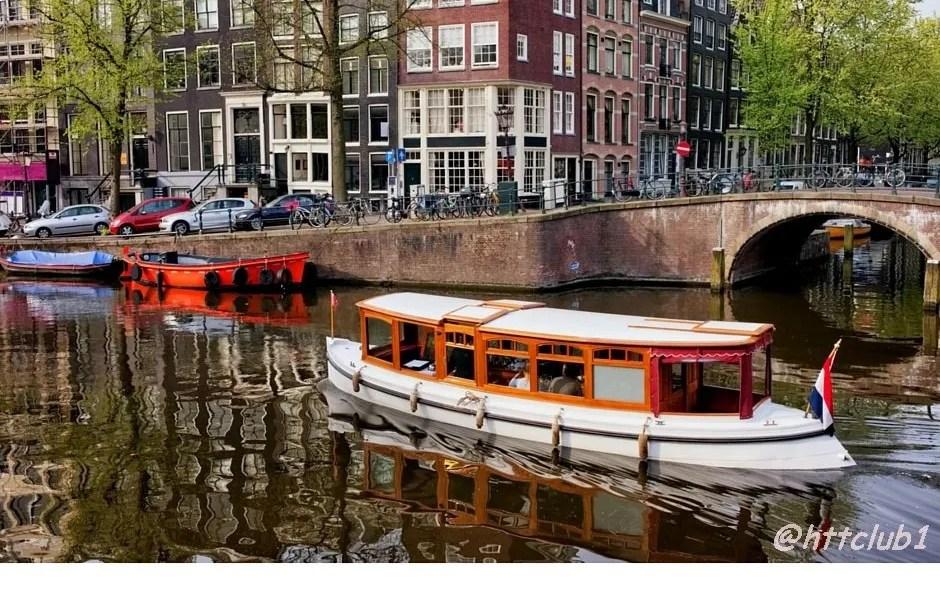 Tulipani e flamenco, protagonisti del Gennaio di Amsterdam