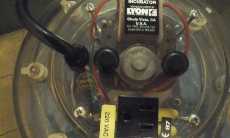 Turn Automatic Incubator Lyon