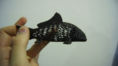 A delicate print of a fish.