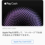 「Apple Pay Cash」いろんなところに表示されるが、日本でも使えるようになるんか?