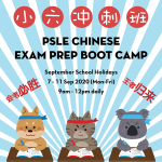 2020 Sep Chinese PSLE Preparatory Course Bootcamp