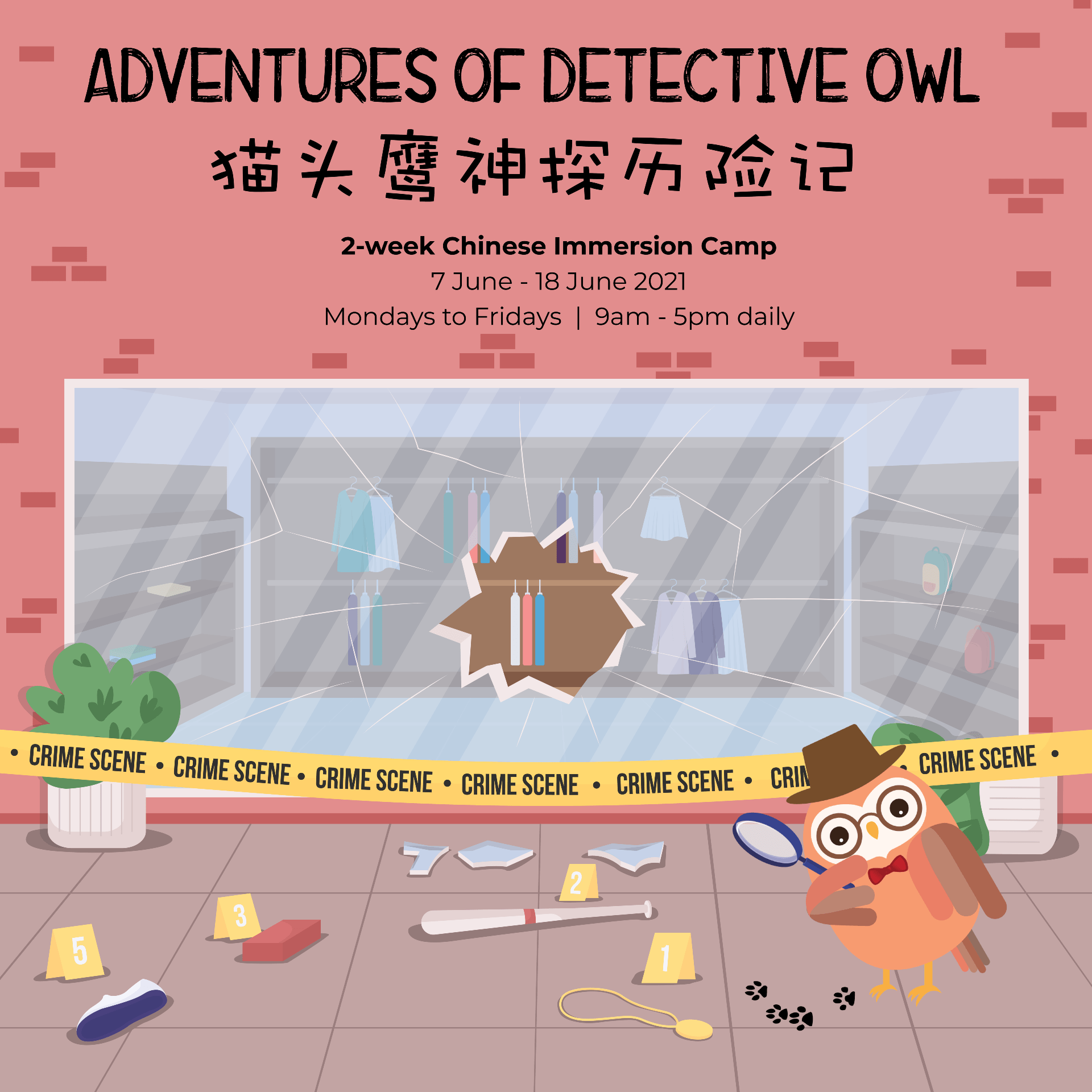 Jun 2021 Chinese Immersion Camp - The Adventures of Detective Owl