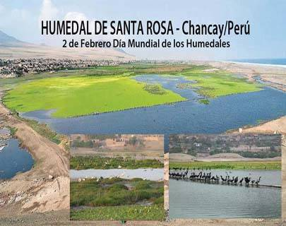 Humedal -Chancay