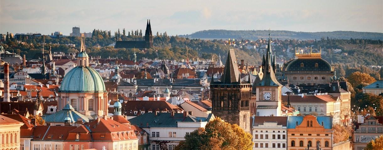 Contact day: the Czech market