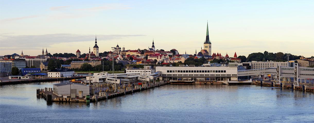 Contact day: the Estonian market