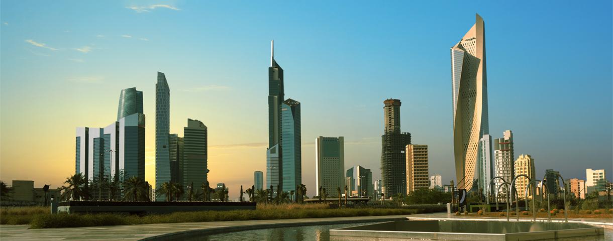 Contact day: the Kuwaiti market