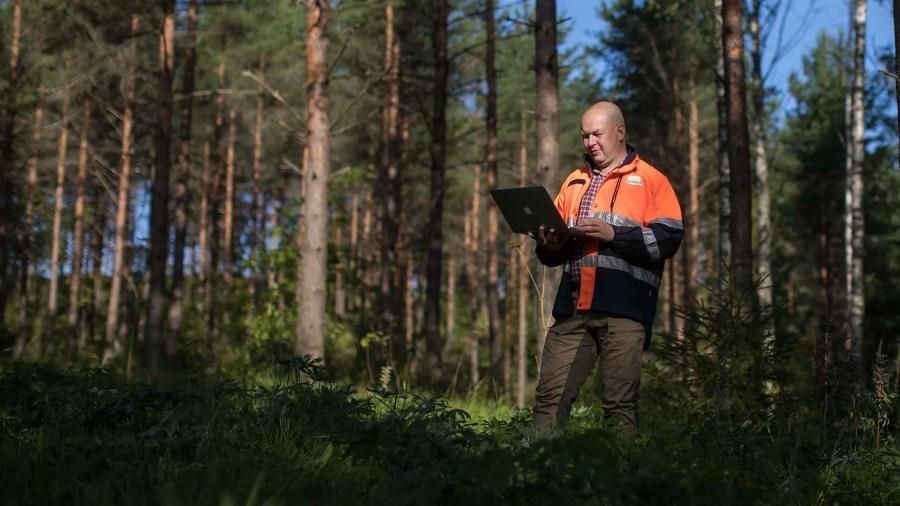 Toimisto 365 metsässä