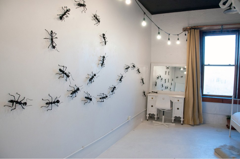 Nicole Uzzell's parade of ants; Photo Credit: Will Parham