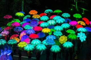 LumiereUmbrellas