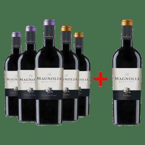 5+1 La Magnoliq-Friuli-promoboks