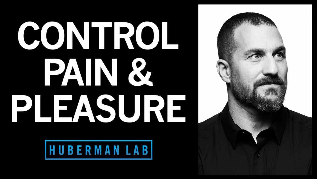 Huberman Lab Podcast Episode 32 Featured Image