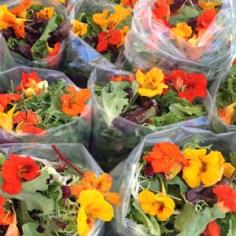 Salad and nasturtium flowers