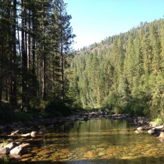 Creek (south fork of the Merced River).