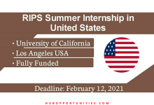 Photo of RIPS Summer Internship Program 2021 in the United States – Fully Funded