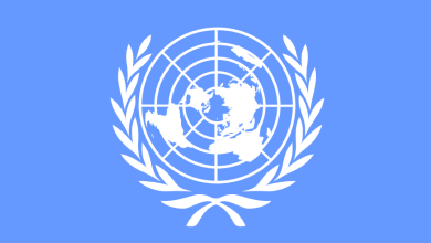 Photo of The United Nations ECA Fellowship Programme for Young African Professionals-
