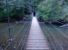 bridge to Grove of the Patriarchs