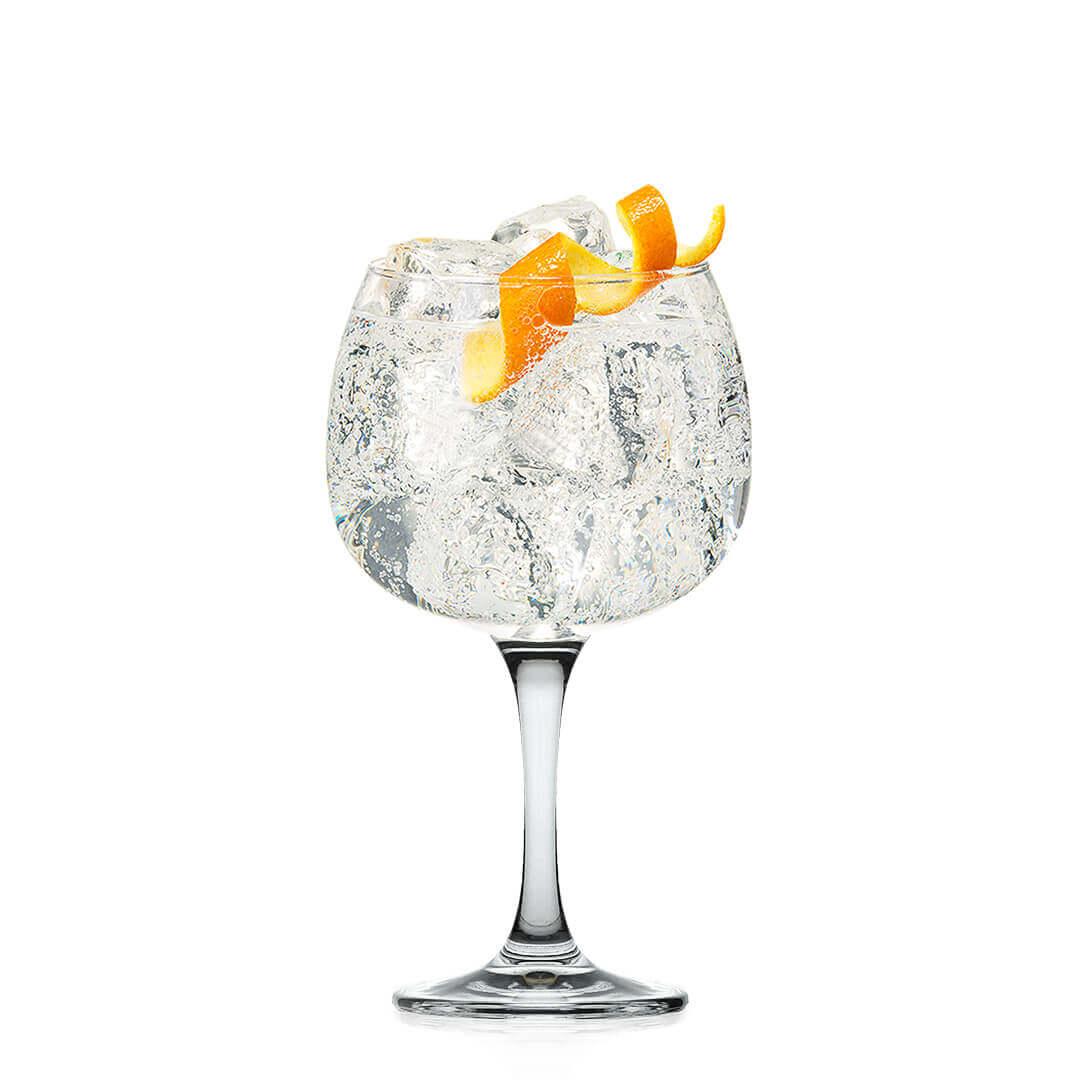 Kozarec za gin in gin tonic- Ritzenhoff® Gin 630 ml