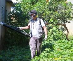Águas Lindas avança na prevenção e combate a dengue